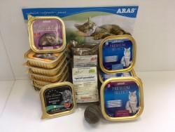Kennenlern-Paket Katze