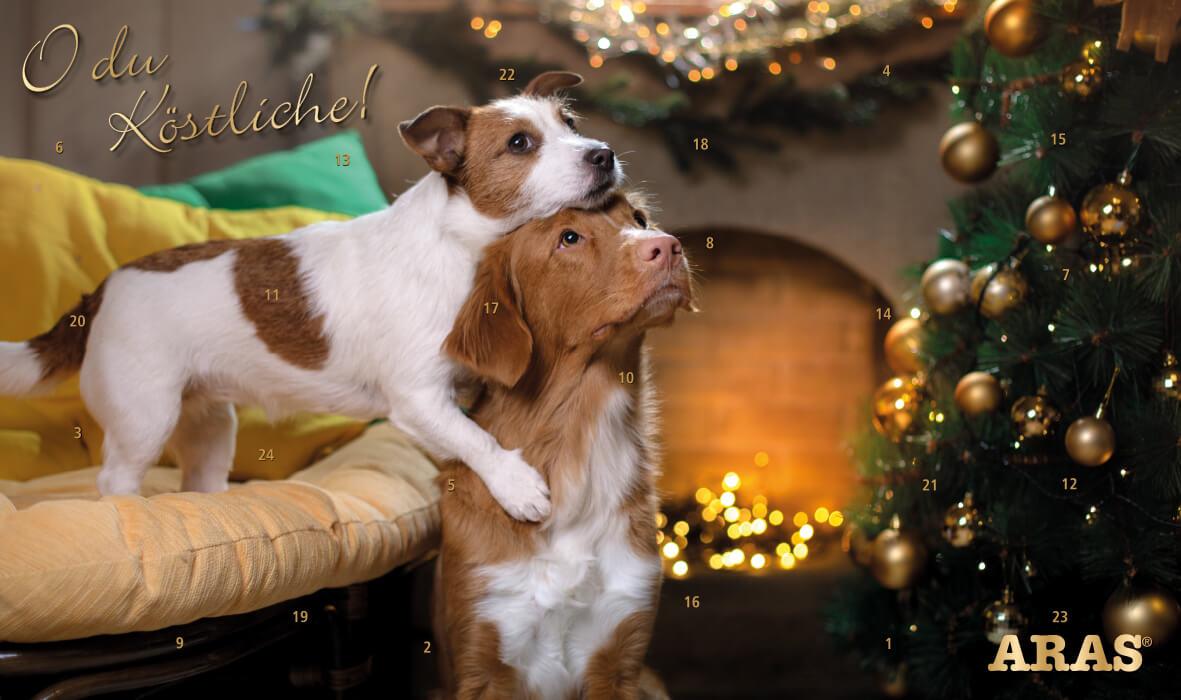Adventkalender für Hunde